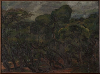 Treescape - Mahabaleshwar