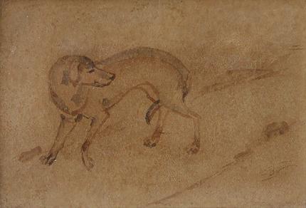Untitled (Dog)